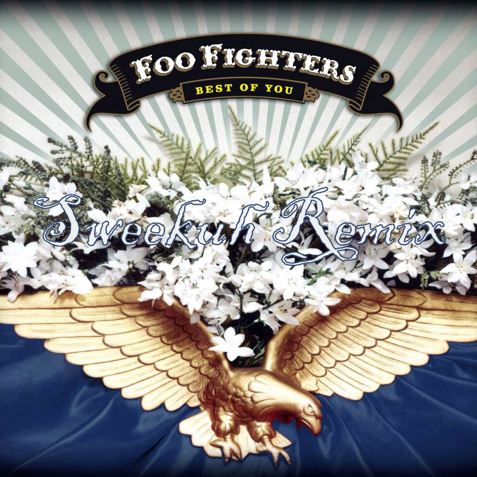 Foo_Fighters-Best_Of_You_(CD_Single)-Frontal1